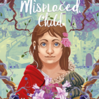 A Misplaced Child by Heather Michelle